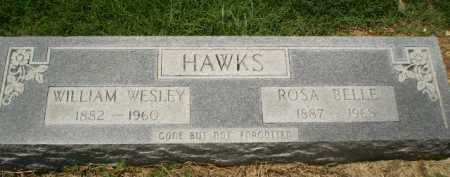 HAWKS, WILLIAM WESLEY - Clay County, Arkansas | WILLIAM WESLEY HAWKS - Arkansas Gravestone Photos