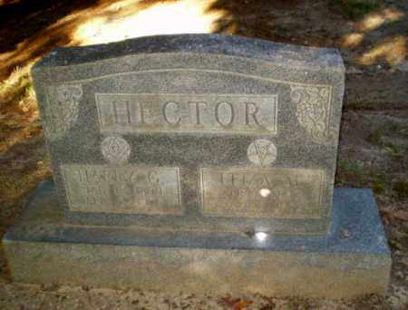 HECTOR, ELIZA M - Clay County, Arkansas | ELIZA M HECTOR - Arkansas Gravestone Photos