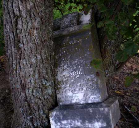 HILL, T.A. - Clay County, Arkansas | T.A. HILL - Arkansas Gravestone Photos
