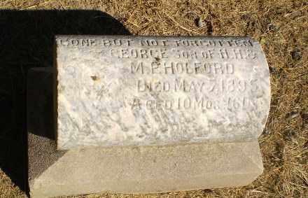 HOLFORD, GEORGE - Clay County, Arkansas | GEORGE HOLFORD - Arkansas Gravestone Photos