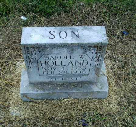 HOLLAND, HAROLD W - Clay County, Arkansas | HAROLD W HOLLAND - Arkansas Gravestone Photos