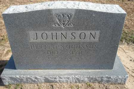 JOHNSON, HERBERT S - Clay County, Arkansas | HERBERT S JOHNSON - Arkansas Gravestone Photos
