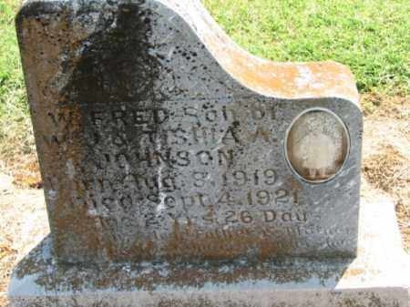 JOHNSON, W. FRED - Clay County, Arkansas | W. FRED JOHNSON - Arkansas Gravestone Photos
