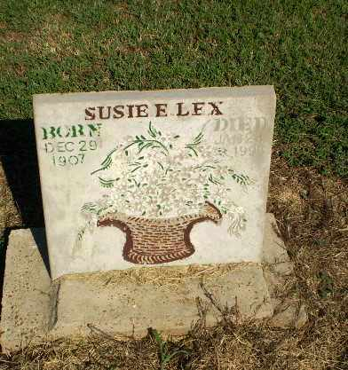 LEX, SUSIE E - Clay County, Arkansas | SUSIE E LEX - Arkansas Gravestone Photos