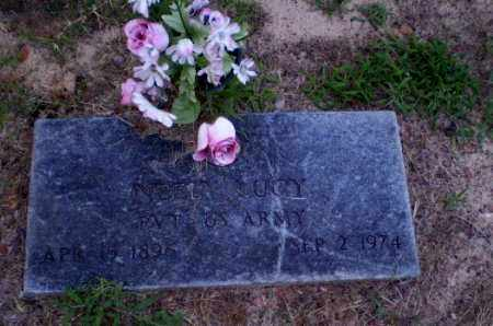 LUCY  (VETERAN), NEELY - Clay County, Arkansas | NEELY LUCY  (VETERAN) - Arkansas Gravestone Photos