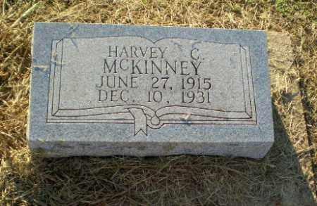 MCKINNEY, HARVEY C - Clay County, Arkansas | HARVEY C MCKINNEY - Arkansas Gravestone Photos