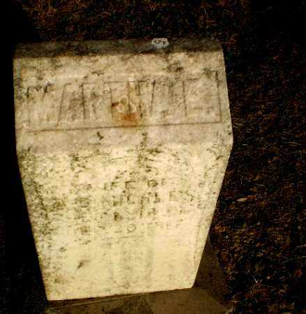 MICHLES, MARTHA E - Clay County, Arkansas | MARTHA E MICHLES - Arkansas Gravestone Photos