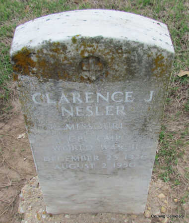 NESLER  (VETERAN WWII), CLARENCE J - Clay County, Arkansas | CLARENCE J NESLER  (VETERAN WWII) - Arkansas Gravestone Photos