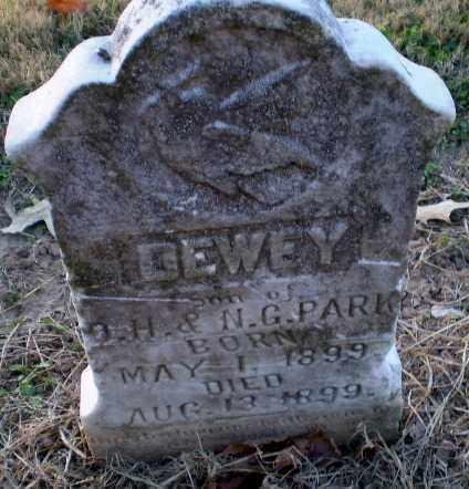 PARK, DEWEY - Clay County, Arkansas | DEWEY PARK - Arkansas Gravestone Photos