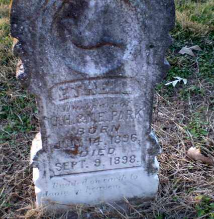 PARK, ETHELL - Clay County, Arkansas | ETHELL PARK - Arkansas Gravestone Photos