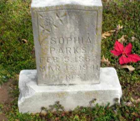 PARKS, SOPHIA - Clay County, Arkansas | SOPHIA PARKS - Arkansas Gravestone Photos