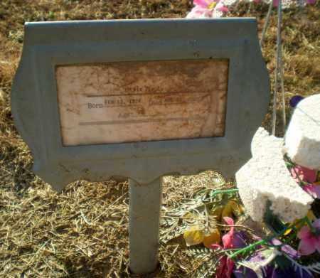 PENCE, SYLVIA - Clay County, Arkansas   SYLVIA PENCE - Arkansas Gravestone Photos