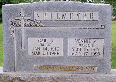 SELLMEYER, CARL B - Clay County, Arkansas | CARL B SELLMEYER - Arkansas Gravestone Photos