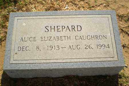 CAUGHRON SHEPARD, ALICE ELIZABETH - Clay County, Arkansas | ALICE ELIZABETH CAUGHRON SHEPARD - Arkansas Gravestone Photos