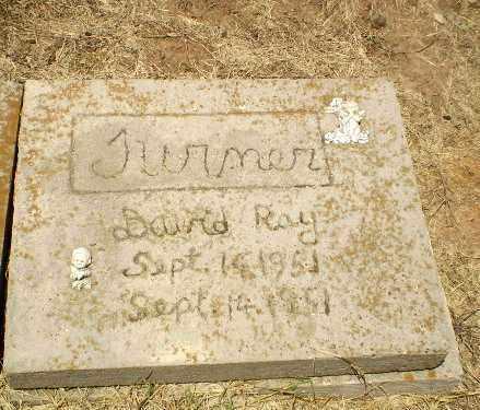 TURNER, DAVID RAY - Clay County, Arkansas | DAVID RAY TURNER - Arkansas Gravestone Photos