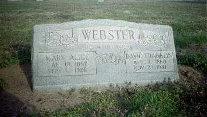 WEBSTER, DAVID FRANKLIN - Clay County, Arkansas | DAVID FRANKLIN WEBSTER - Arkansas Gravestone Photos