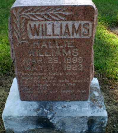 WILLIAMS, HALLIE - Clay County, Arkansas | HALLIE WILLIAMS - Arkansas Gravestone Photos