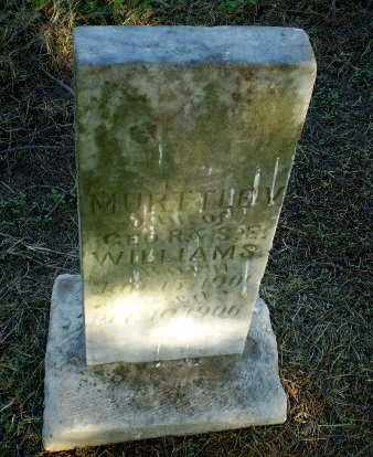 WILLIAMS, MURTTLE V - Clay County, Arkansas | MURTTLE V WILLIAMS - Arkansas Gravestone Photos