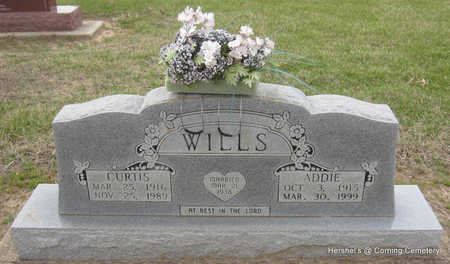 WILLS, CURTIS - Clay County, Arkansas | CURTIS WILLS - Arkansas Gravestone Photos