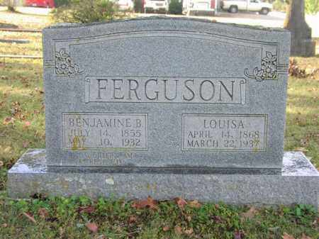 FERGUSON, LOUISA - Cleburne County, Arkansas | LOUISA FERGUSON - Arkansas Gravestone Photos