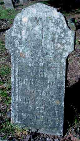 HOGGARD, J. R. - Cleburne County, Arkansas   J. R. HOGGARD - Arkansas Gravestone Photos