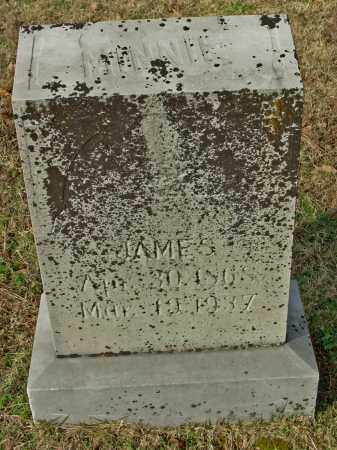 JAMES, MINNIE - Cleburne County, Arkansas | MINNIE JAMES - Arkansas Gravestone Photos