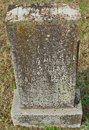 JAMES, WILLIE - Cleburne County, Arkansas | WILLIE JAMES - Arkansas Gravestone Photos