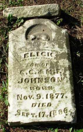 JOHNSON, ELICK - Cleburne County, Arkansas | ELICK JOHNSON - Arkansas Gravestone Photos