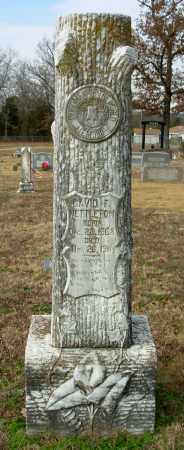 NETTLETON, DAVID F. - Cleburne County, Arkansas | DAVID F. NETTLETON - Arkansas Gravestone Photos